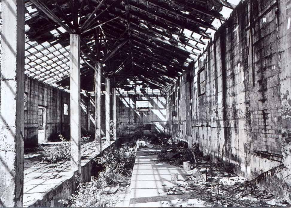 זכריה שדה, טודי - zeharia-138