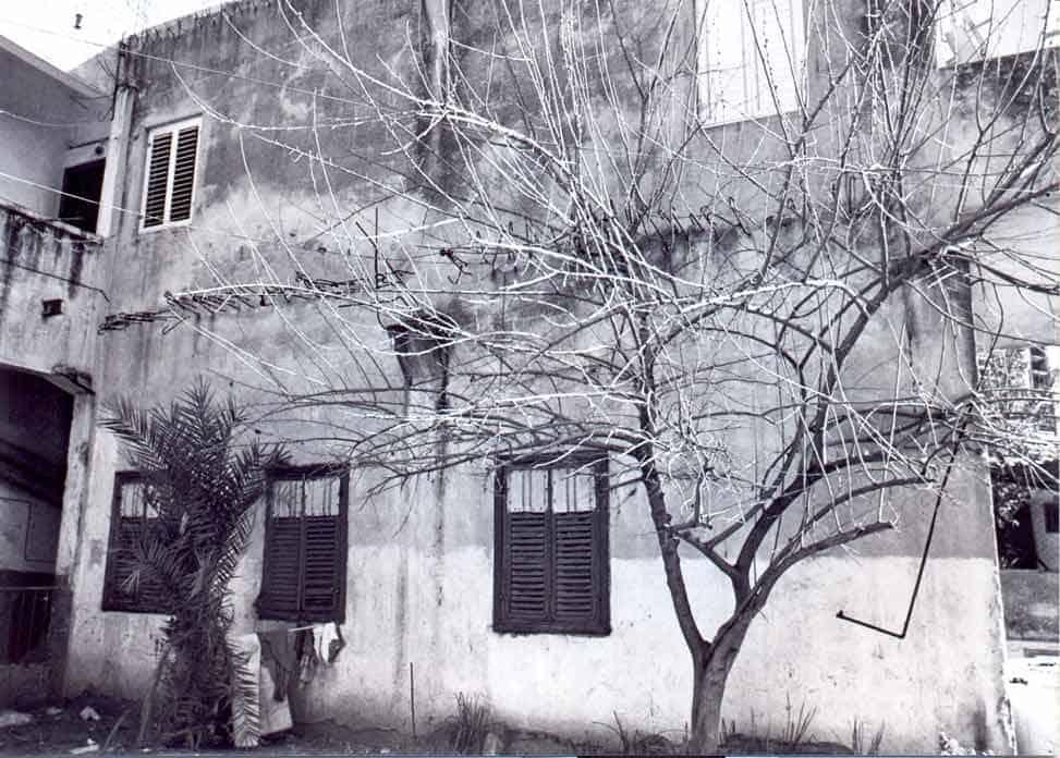 זכריה שדה, טודי - zeharia-34